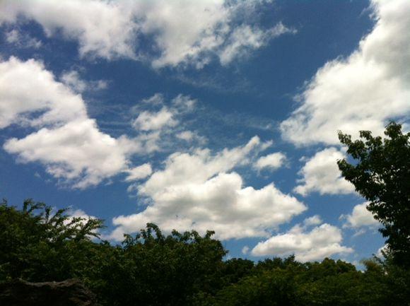 image from http://kyoko.weblogs.jp/.a/6a0120a68548c1970b0163068bfcdb970d-pi