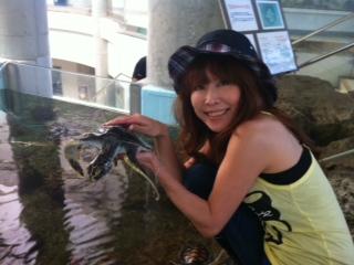 image from http://kyoko.weblogs.jp/.a/6a0120a68548c1970b017ee4586d18970d-pi