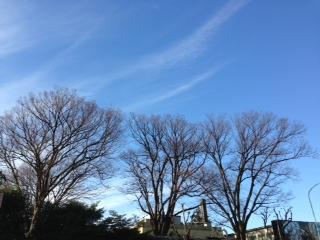 image from http://kyoko.weblogs.jp/.a/6a0120a68548c1970b017c352e67c9970b-pi
