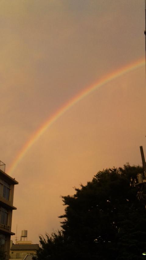 虹だぁぁぁあ